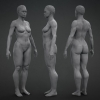 African Female Mesh^by Anthony Handy
