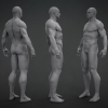 Male Base Mesh^by Anthony Handy
