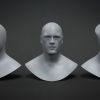3D Head Base Meshes^by Lonnie G Dunkin III