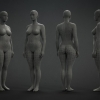 Female Base Mesh^by Eugene Fokin