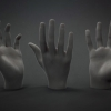 Hand Gestures Brush Set^by Peter Lemmens