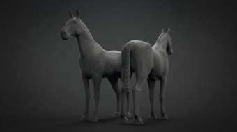 Horse Base Mesh^By Siddhartha Ahearne