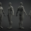 Male Base Mesh^by Paul Chen