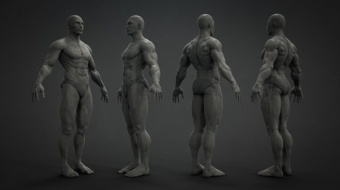 Male Base Mesh^by Paul Chen