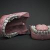 Teeth Model Set^By Dmitrij Leppée