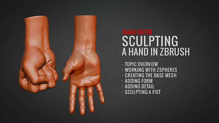 Sculpting a Hand
