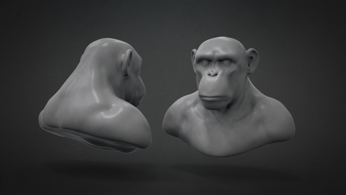 Chimp_Sculpt_Chapter_02