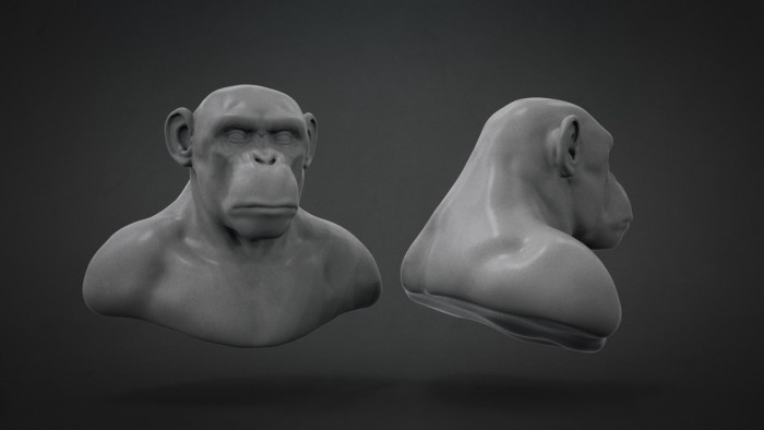 Chimp_Sculpt_Chapter_03