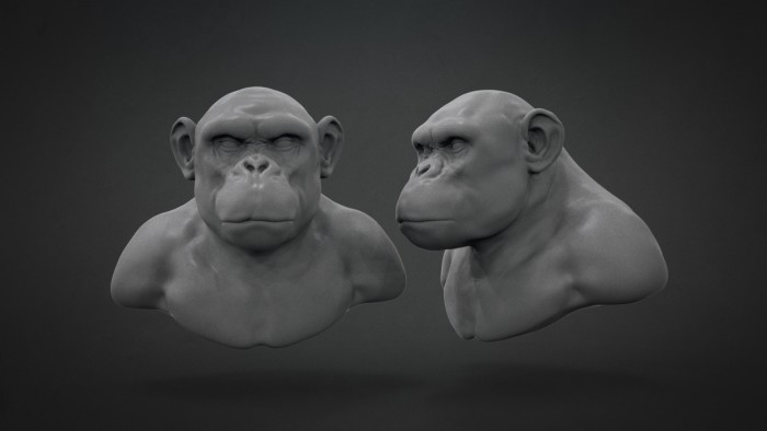 Chimp_Sculpt_Chapter_04