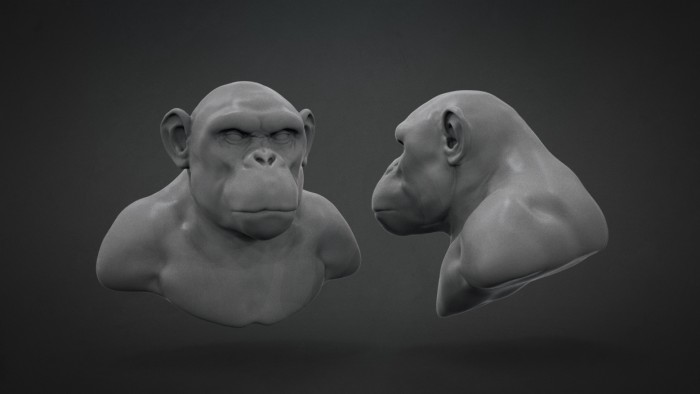 Chimp_Sculpt_Chapter_05