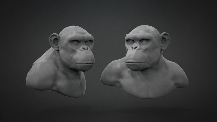 Chimp_Sculpt_Chapter_06
