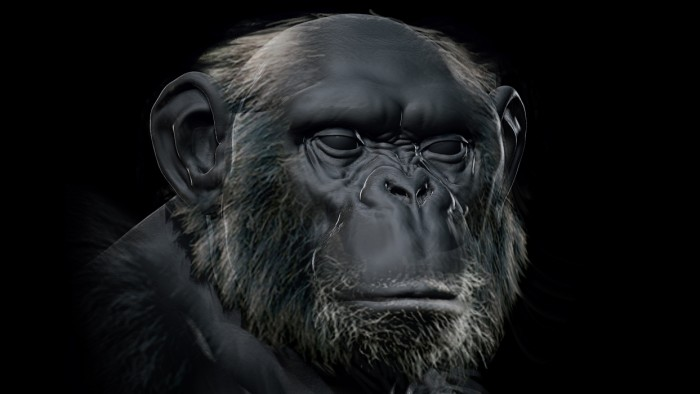 Chimp_Sculpt_Chapter_07_Part_01