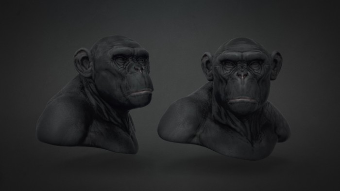 Chimp_Sculpt_Chapter_08