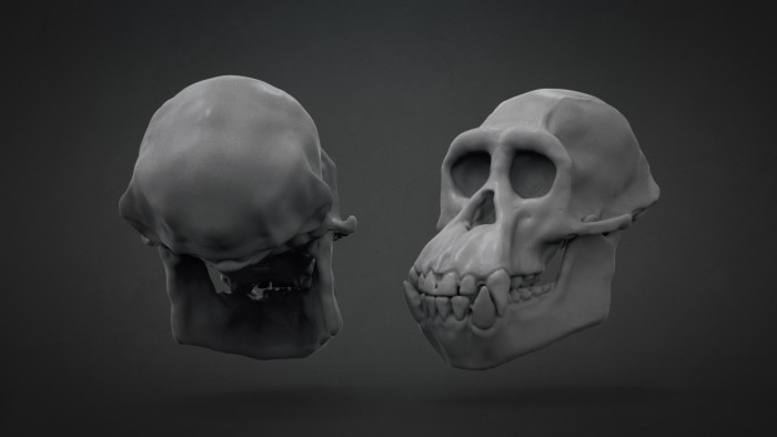 Chimp_Skull_Chapter_05