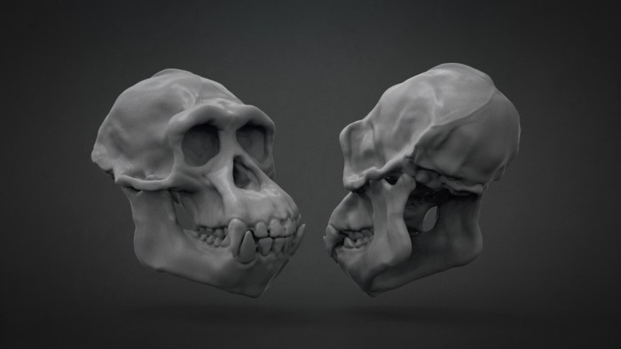 Chimp_Skull_Chapter_06
